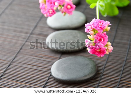 Stones path with flowers for zen spa background, horizontal. selective focus on the first flower
