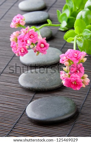 Stones path with flowers for zen spa background, vertical. selective focus on the first flower