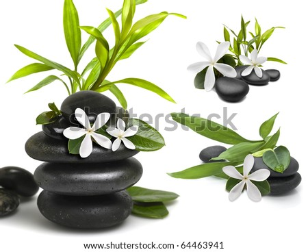 Stones with green bamboo leafs and white flower on white background