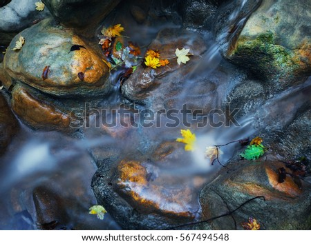 Stones with green moss and colorful autumn leaves in mountain river. Blurred water. Nature background. Autumn. Vintage toning. Close-up