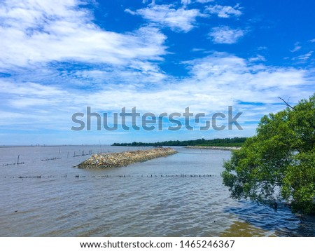 Stony breakwater in the sea, breakwater with blue sky and mangrove forest #1465246367