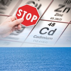 Stop pollution from dangerous cadmium and heavy metals in seawater - concept with hand holding a stop sign against a cadmium chemical element with the Mendeleev periodic table on seawater background.