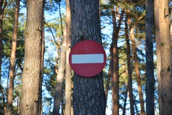 stop sign no entry into the forest on a pine tree