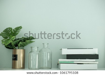 Storage Shelf with composition black and white book and plant on green mint background.
