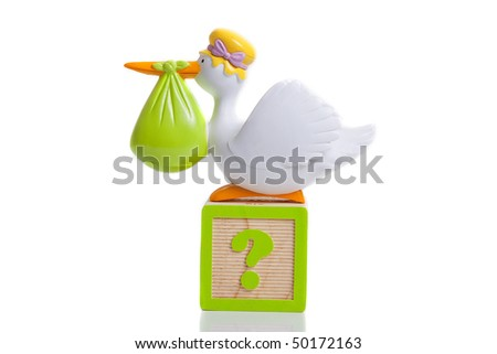 stork bringing baby with question mark boy or girl