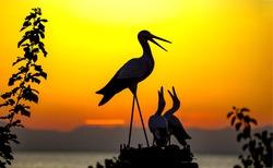 Stork nest sunset sihouette view. Sunset stork nest silhouette. Stork nest sunset view. Sunset view stork nest silhouette
