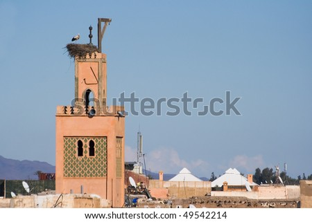 Stork on a mosk in Marrakech, Morocco