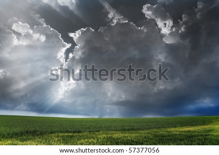 Storm clouds over field with green grass. - stock photo