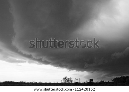 storm clouds over woods