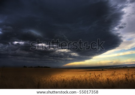 storm over wheat crop
