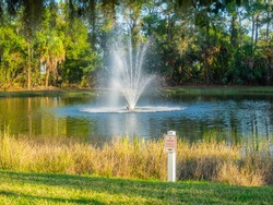 Storm water retention ponds are basins that catch runoff from higher elevation areas.