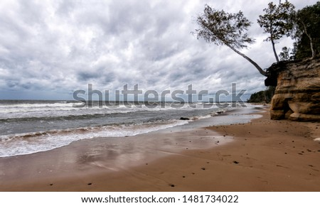 Storming sea with a thundercloud above, a lone birch tree on a the edge of a cliff, beautiful rugged coastline with waves crashing against the cliffs, Veczemju cliffs, Latvia #1481734022