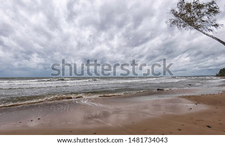 Storming sea with a thundercloud above, a lone birch tree on a the edge of a cliff, beautiful rugged coastline with waves crashing against the cliffs, Veczemju cliffs, Latvia #1481734043