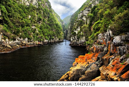 Storms River -  Eastern Cape, South Africa #144292726