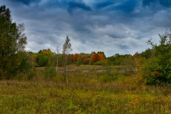 Stormy autumn landscape under threatening clouds with colorful foliage on the trees and a scenic meadow conceptual of the weather and seasons