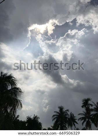 Stormy clouds in the sky and coconut trees are under the sky