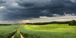 Stormy Fields Landscape Panorama in north Poland/ Grain Fields Storm