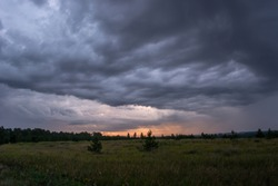 stormy gloomy sky with voluminous dark blue clouds in a field surrounded by small pines