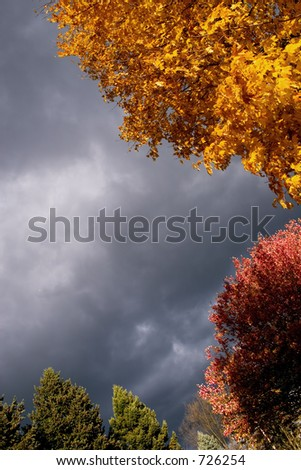 Stormy sky with autumn colors