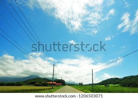 Straight endless road through farm #1206503071