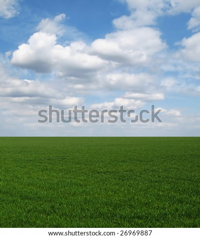 Straight green field and blue sky with white clouds