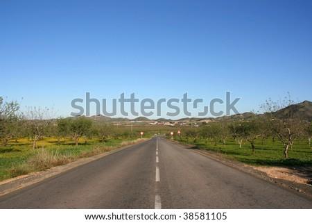 Straight road in Southern Spain. Vanishing point phenomenon.