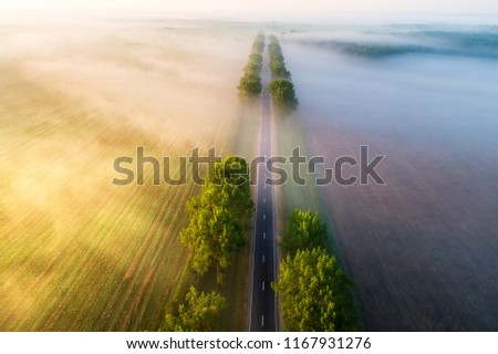 Straight road in  the morning view from above. Transportation background. Beautiful aerial landscape with road in colorful fog. Misty autumn nature. #1167931276