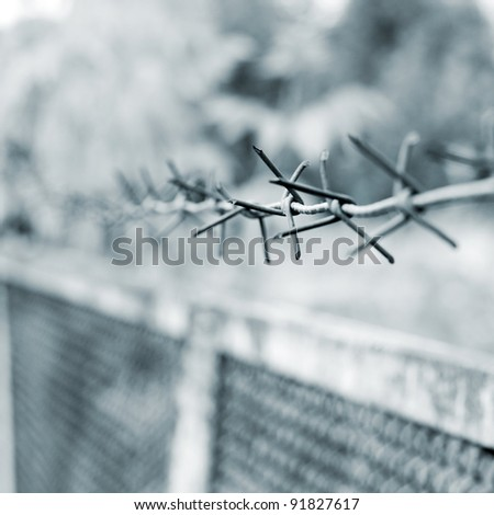 strands of barbed wire against a soft gray background