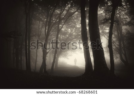 strange man person walking in a dark forest with fog