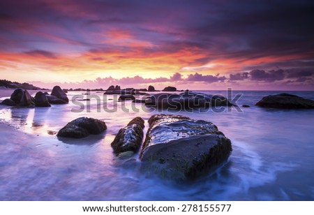Strange rocks and moss in the morning at Co Thach beach , Tuy Phong , Binh Thuan province , Vietnam