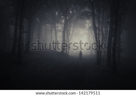 strange silhouette in a dark spooky forest at night #142179511