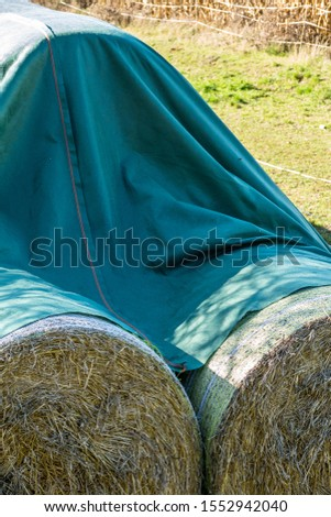 Straw bales and silage bales on the field #1552942040