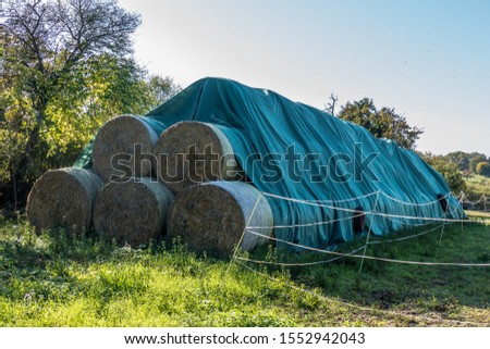 Straw bales and silage bales on the field #1552942043