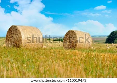 Straw bales in irish countryside - stock photo