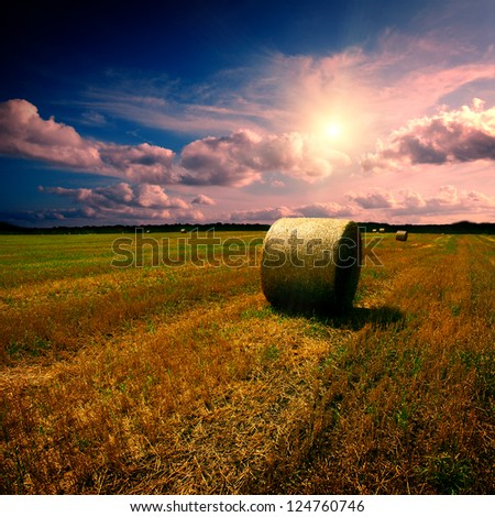 Straw bales on field with blue cloudy sky
