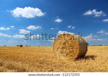 Straw bales on the field with blue cloudy sky above bb