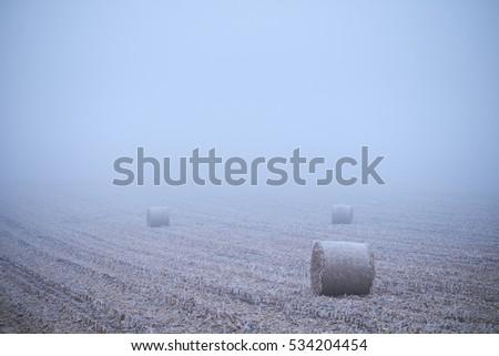 Straw bales on winter field #534204454