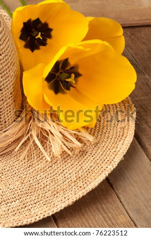 Straw Hat Adorned with Yellow Tulips,  a vertical close up with Copyspace or room or space for your text or words - stock photo