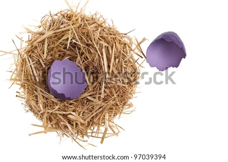 Straw nest with broken eggshell over white studio shoot
