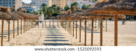 Straw parasols in a row on the sandy beach in Palma Nova district of Majorca tourist resort, Balearic Islands, Spain. Panoramic image, concept of summer holidays travel and touristic place
