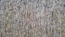 Straw pattern. Thatched grass, roof or wall. Straw, hay or dry grass roof background, thatch roof texture.