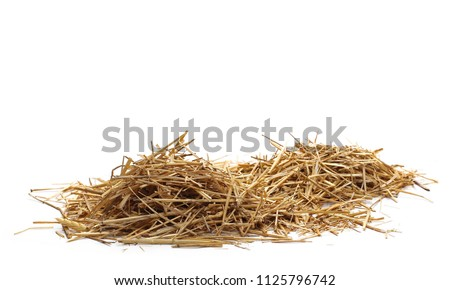 Straw pile isolated on white background and texture #1125796742