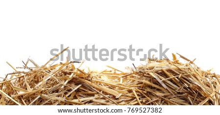 Straw pile isolated on white background, clipping path #769527382