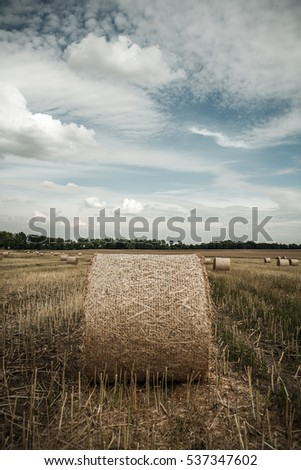 Straw rolls on a field under partly cloudy skies #537347602