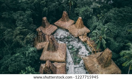 """Straw roof huts. Traditional Sumbanese village. Jungle. Cone shape authentic houses """"ratenggaro"""" intermingle with tombs. Sumba island, Indonesia."""