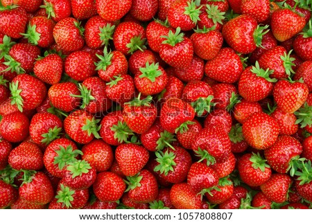 Strawberries background. Strawberry. Food background. Stockfoto ©