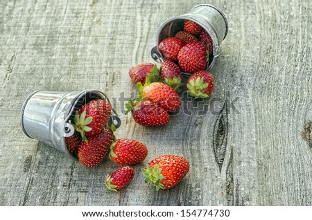 Strawberries in pots with amazing colors