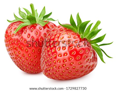 Strawberry fresh organic fruit. Two strawberries isolated on white background. Ripe fresh strawberry clipping path.