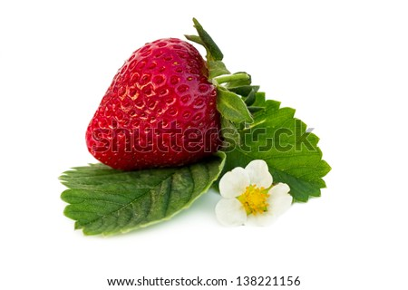 Strawberry fruit with flower and green leaves, isolated on white background