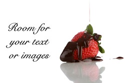 Strawberry with Chocolate Sauce isolated on white with room for your text or images